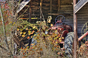 Fall Colors Autumn Colors Photo Posters - Farmall Find Poster by Benanne Stiens