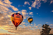 River Greeting Cards Posters - Farmers Insurance Hot Air Ballon Poster by Robert Bales