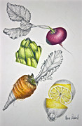 Lemon Drawings - Farmers Market by Karen Risbeck