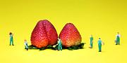Farmers Working Around Strawberries Print by Paul Ge