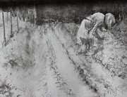 Farmer Drawings - Farming in Basking Ridge by Dorothy Siclare