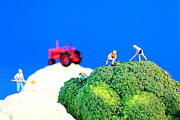 Miniature Art - Farming on broccoli and cauliflower II by Mingqi Ge