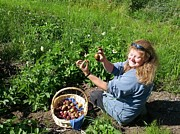Jesse Flaherty - Farming Potatoes in...
