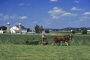 Pennsylvania Dutch Photos - Farming the Old Order way by Paul W Faust -  Impressions of Light