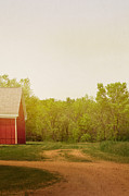 Country Driveway Photo Posters - Farmland Poster by Margie Hurwich