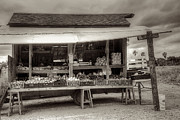 Old Florida Prints - Farmstand Print by William Wetmore