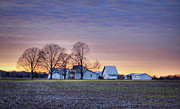 Buildings At Sunset Prints - Farmstead at Sunset Print by Cricket Hackmann
