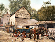 Farmyard Digital Art Posters - Farmyard Scene 1900 Poster by Unknown