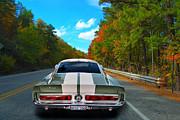 Bill Dutting - Fast 350