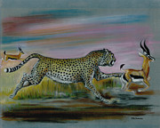 Cheetah Drawings Framed Prints - Fast and Furious Framed Print by Peter Melonas