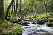 Moss Green Framed Prints - Fast Flowing River Framed Print by Helen Hotson