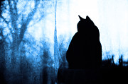 Domestic Pets Mixed Media - Fat Cat Silhouette In Blue by Andee Photography