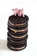 Stack Prints - Fat PIgs 5 Print by Amy Cicconi