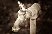 Faucet In Fall Print by Cathie Tyler