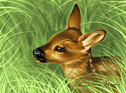 Deer Digital Art Metal Prints - Fawn Metal Print by Veronica Minozzi