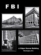 Law Enforcement Posters - FBI Poster Poster by Olivier Le Queinec