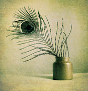 Kristin Kreet Metal Prints - Feather Metal Print by Kristin Kreet