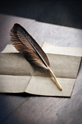 Lee Avison - Feather On Folded Paper