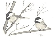 Chickadee Drawings Prints - Feathered Friends Print by Patricia Hiltz