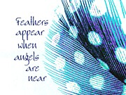 Motivational Sayings Prints - Feathers Appear Print by Sally Simon