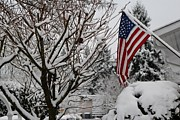 Ronald Hanson - Feb Snow In Washington...