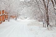 Winter Scene Metal Prints - February Snow Metal Print by Theresa Tahara