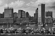 Seaport Posters - Federal Hill View To The Baltimore Skyline BW Poster by Susan Candelario