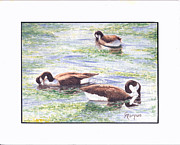 Ducks Pyrography - Feeding Pond by Colleen Marquis