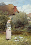 Country Cottage Posters - Feeding the Ducks Poster by Charles Edward Wilson