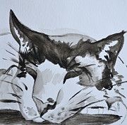 Wash Painting Originals - Feline by Beverley Harper Tinsley