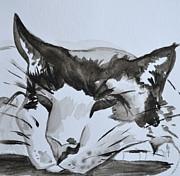 Feline Print by Beverley Harper Tinsley