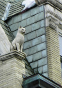 Architecture Prints - Feline Sentry Print by Jeff Kolker