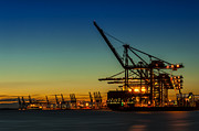 Ropes Framed Prints - Felixstowe Docks Framed Print by Svetlana Sewell