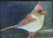 Barbara Haviland - Female Cardinal