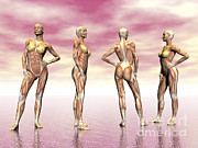 Human Body Parts Digital Art Posters - Female Muscular System From Four Points Poster by Elena Duvernay
