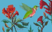 Dessie Durham Art - Female Rufous Hummingbird by Dessie Durham