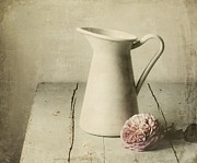 Flower Still Life Metal Prints - Femininity Metal Print by Amy Weiss