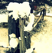Split Rail Fence Photos - Fence by Alexandre Lafreniere