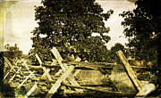 Split Rail Fence Prints - Fence at Antietam Print by Janelle Oliver