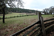 Graham Foulkes - Fence at the Farm at...