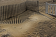 Sand Fences Photos - Fence Line by Gallery Three