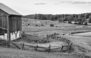 Impasto Photo Posters - Fence Line monochrome Poster by Steve Harrington