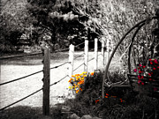 Black-and-white Digital Art Metal Prints - Fence near the Garden Metal Print by Julie Hamilton