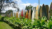 Screen Used Metal Prints - Fence of old Surfboards Metal Print by John Orsbun