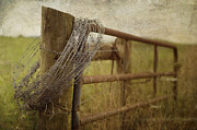 Gate Prints Prints - Fence Post Print by Kathy Jennings