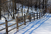 Karen Adams - Fence Shadows in Winter...