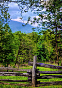 Split Rail Fence Photos - Fenced in Beauty by Dave Bosse