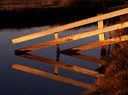 Fences Prints - Fenced Reflection Print by Bill Gallagher