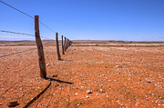 Australia Photos - Fenceline Outback Australia by Colin and Linda McKie