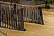 Sand Fences Art - Fences by Gallery Three